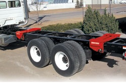 Rice